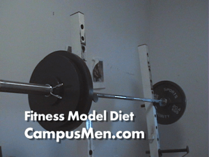 Male Fitness Model Diet